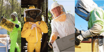 different kind of bee suit